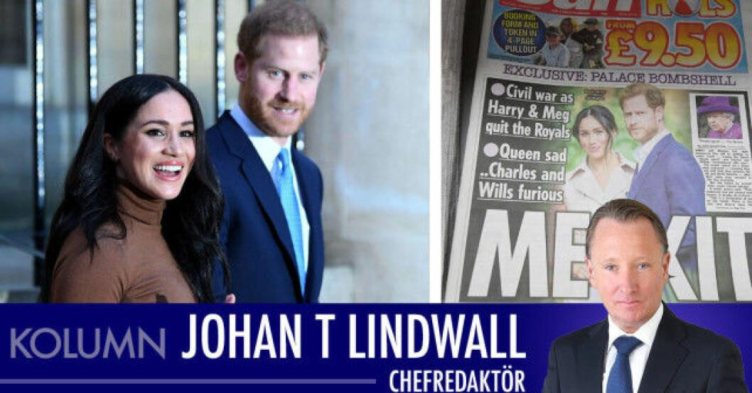 Johan T lindwall harry meghan oprah
