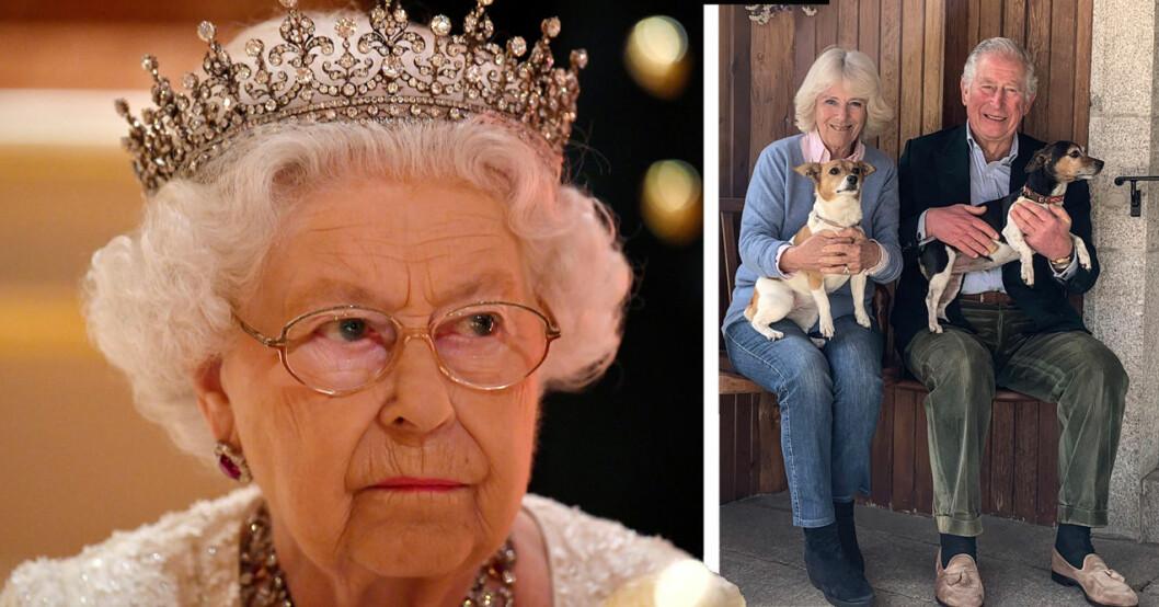Drottning Elizabeth, prins Charles och Camilla med sina hundar