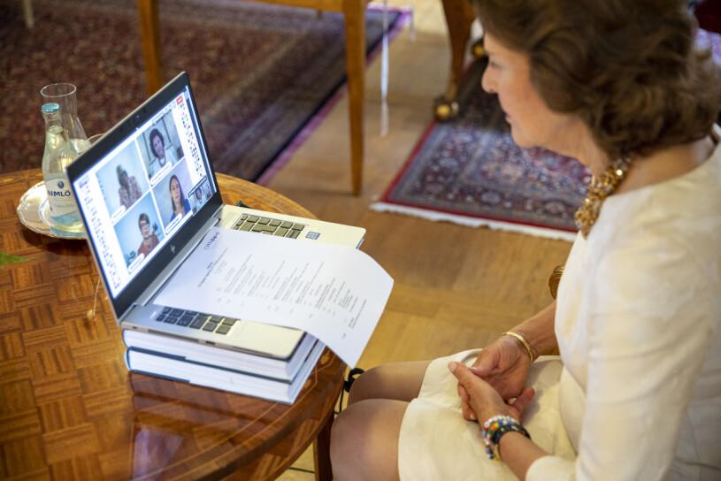 Drottning Silvia videomöte arbetsplats slottet