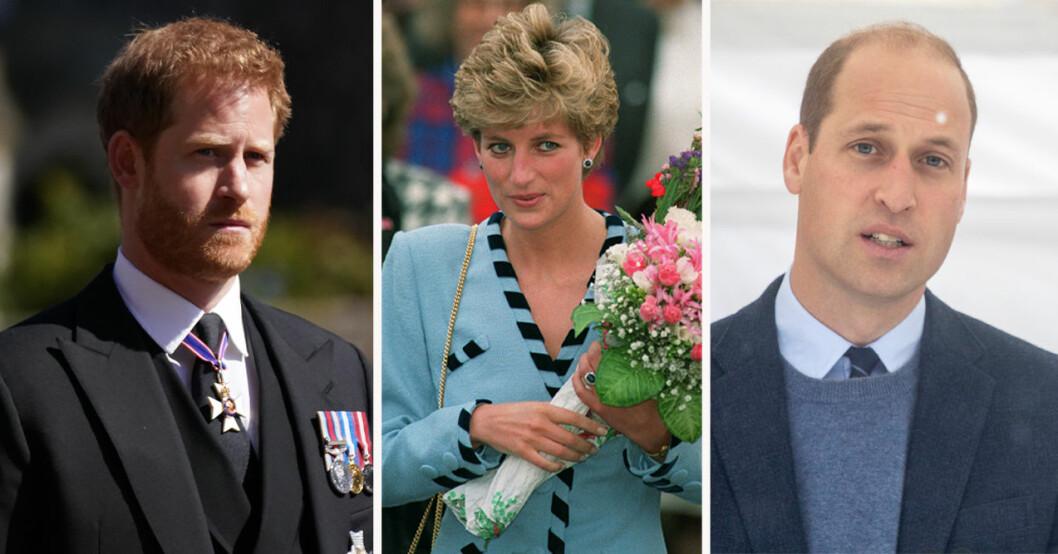 Prins Harry, prinsessan Diana och prins William