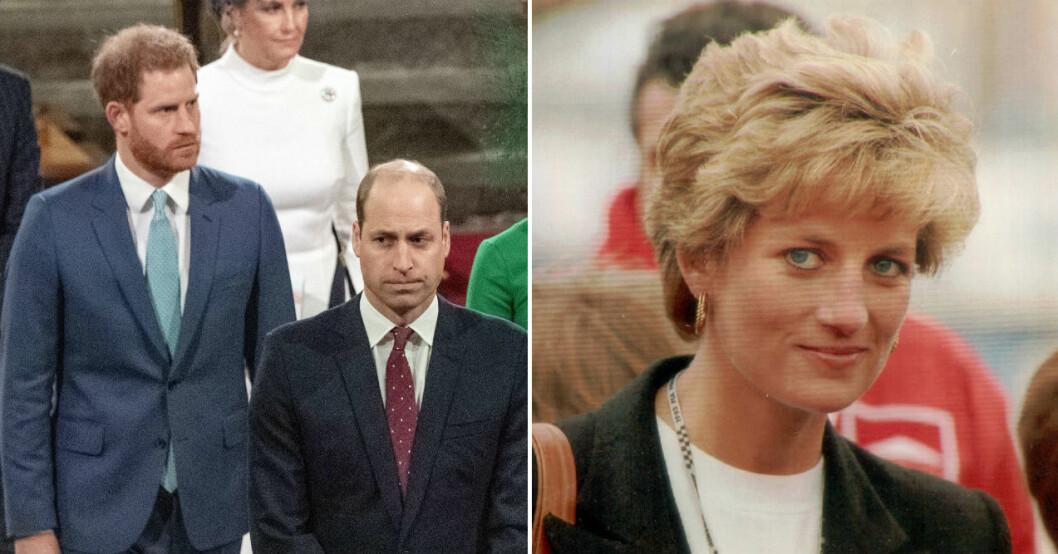 Prins Harry, prins William och prinsessan Diana