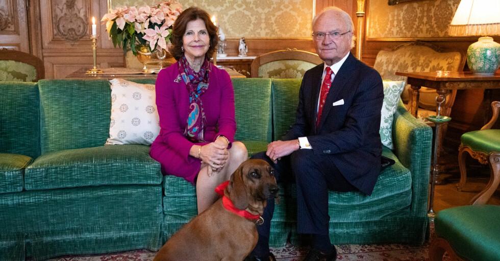 Drottning Silvia Kungen Hunden Brandie Förlovningssoffan Stockholms slott