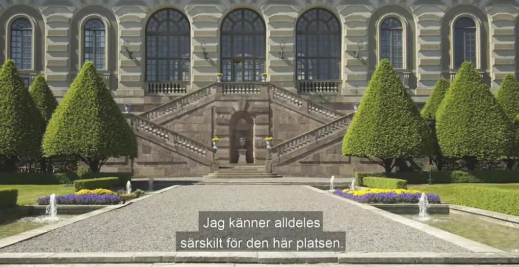 Logården som är Kungliga slottets trädgård.