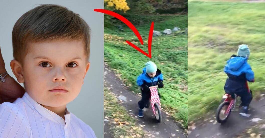 prins oscar cykel hagaparken
