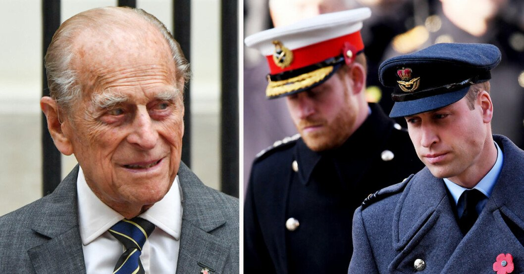 Prins Philip, prins Harry och prins William