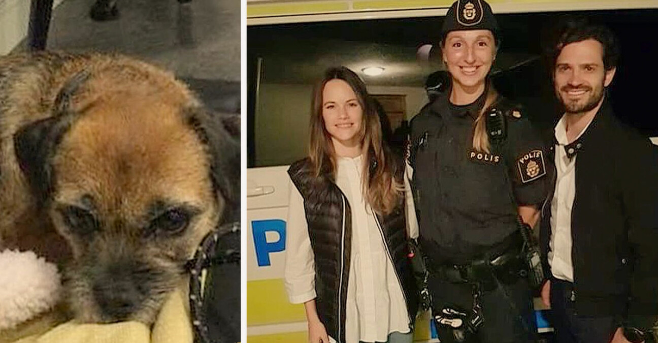 Prins Carl Philip Prinsessan Sofia Hunden Siri borderterrier polisen