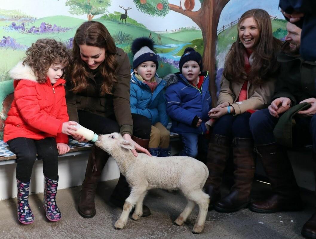 Kate fick träffa både människor och djur.