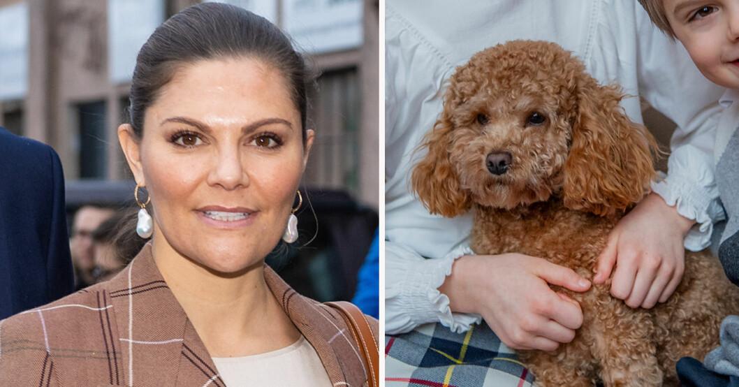 Kronprinsessan Victoria och hunden Rio